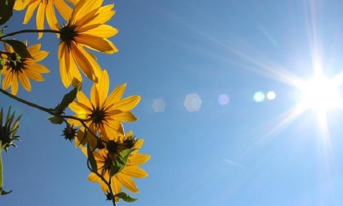 Викендот почнува со сонце и температура до 34 степени