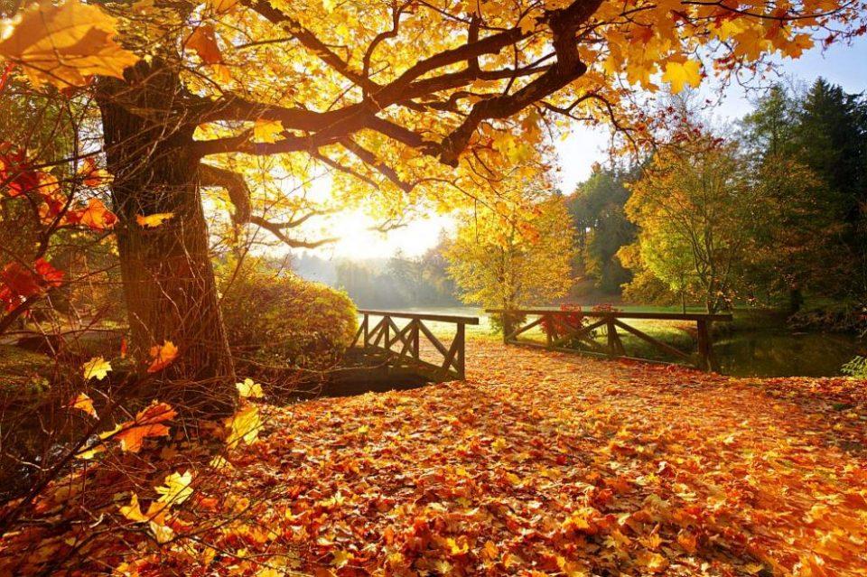 Екстремно топло, со потпросечни врнежи во октомври