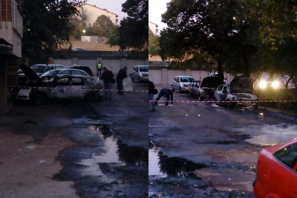 Пеплосаните возила на Маринела Тушева ги скараа ВМРО-ДПМНЕ и Костадинов