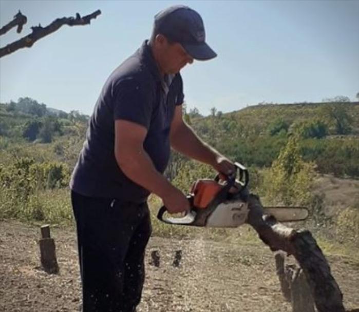 Земјоделците ги сечат дрвата: Нема веќе праски за 5 денари