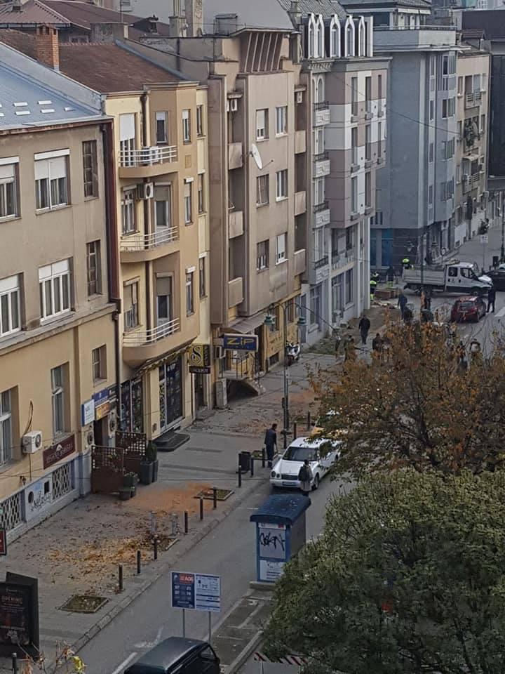 """Град Скопје: Вода полна со хемикалии ги умре јапонските цреши на """"Максим Горки"""""""
