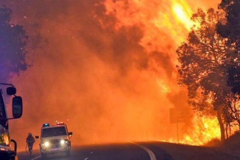 Најмалку три жртви во шумските пожари во Австралија