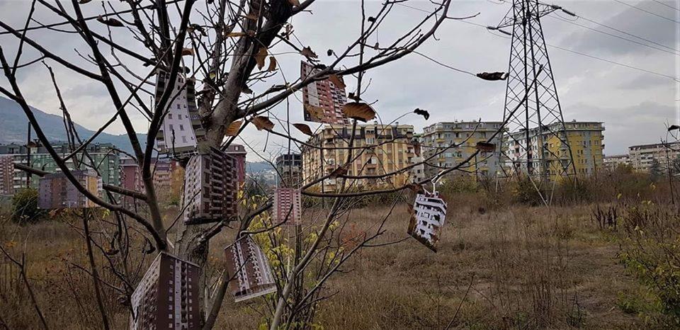 На дрвјата во Расадник никнаа згради