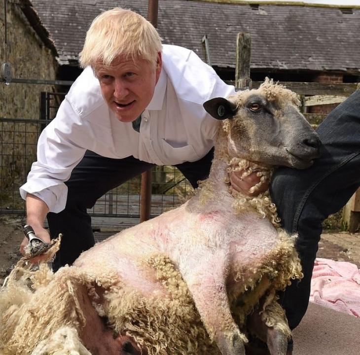 Британскиот премиер стриже овци, вози формула, продава колачи, игра фудбал…