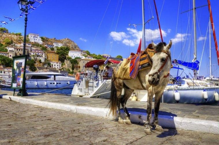 Казни и до 30.000 евра за прекршување на законот за магаренцата на островот Санторини