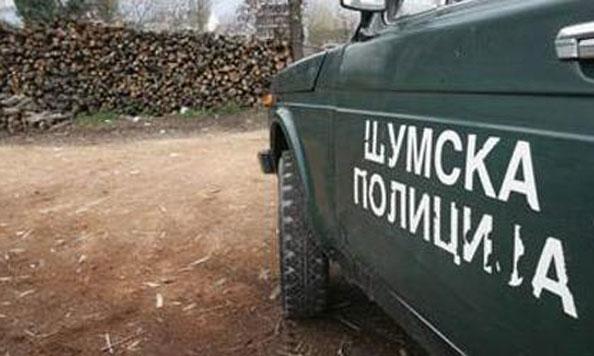 Шумар од Кичево доби кривична пријава