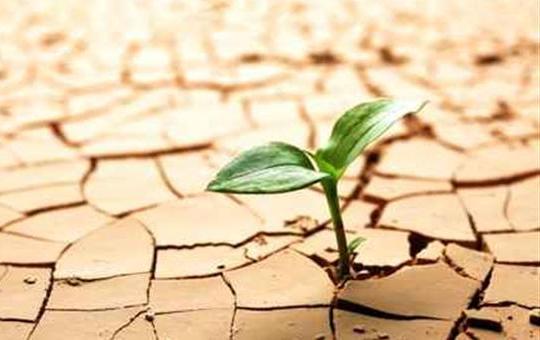Генералниот секретар на ОН, Гутереш разочаран од конференцијата за климатските промени