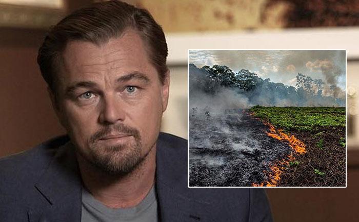 Леонардо ди Каприо плаќал за да се палат шумите во Амазонија