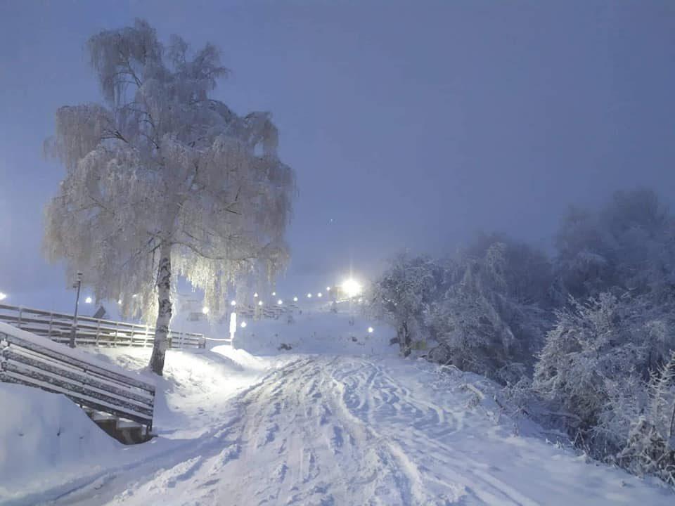 Зимска идила на Стрежево