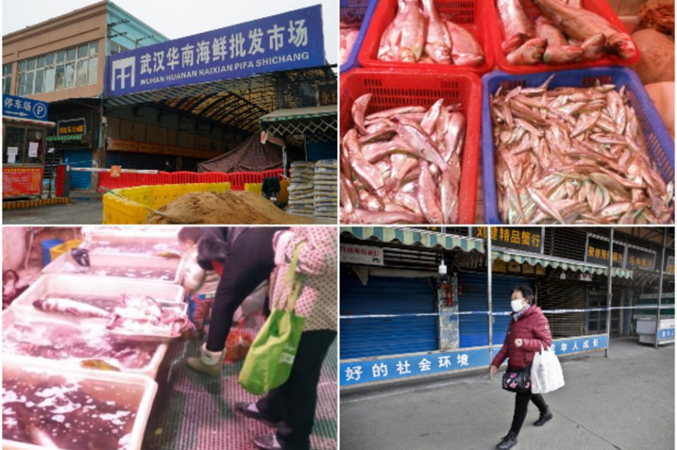 Змии, коали и скорпии се продаваат во леген: Гнасни слики од пазарот каде што се разви новиот вирус