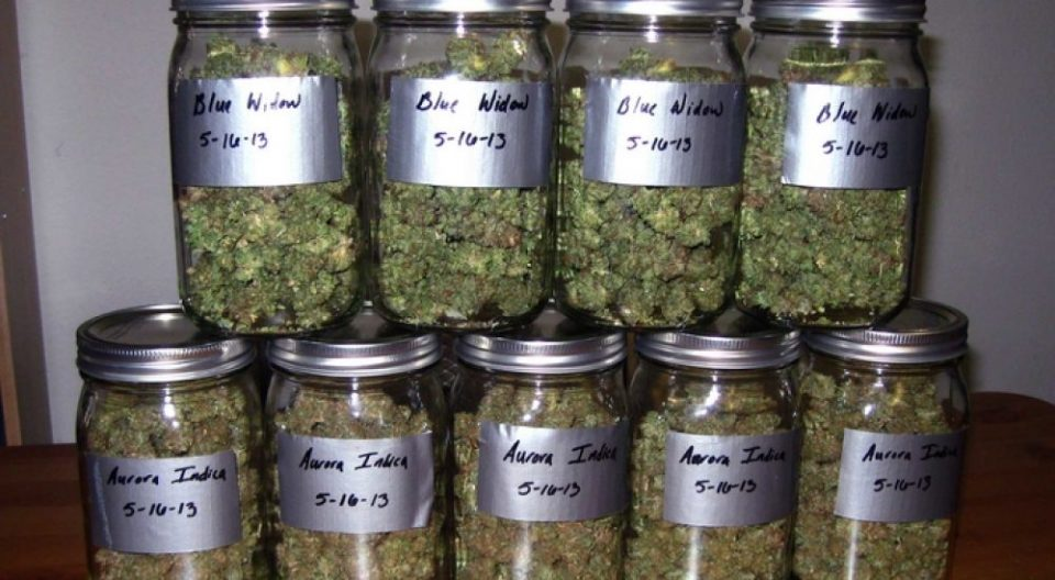 Ја криел марихуаната во куќата на дедо му во Чаир