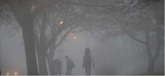 Загадувањето на воздухот ја зголемува смртноста од ковид-19 за 15 проценти