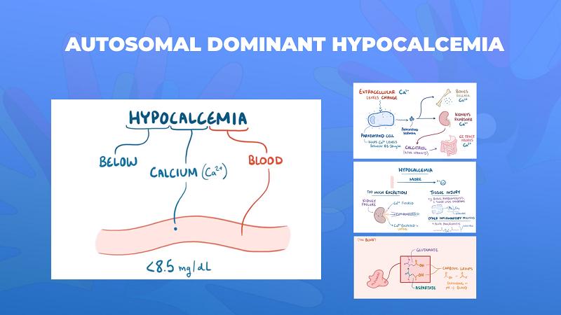 Ги запознаваме ретките болести: Автозомно доминантна хипокалцемија