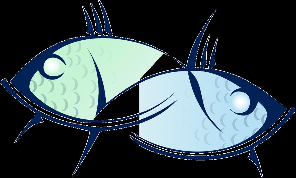 Почнува владеењето на Рибите: Зошто тие се толку посебни?