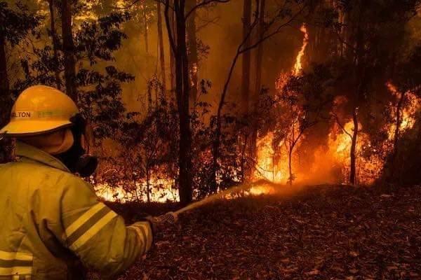 Рекордни температури во Канбера, пожарите се уште активни