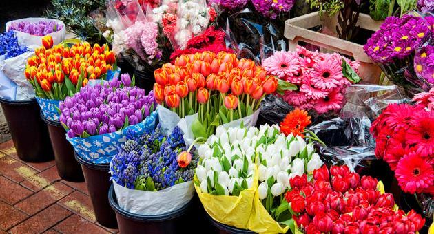 Овие цвеќиња не треба да ги подарувате на Денот на вљубените