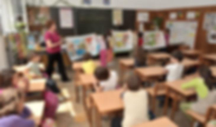 Нема вонреден распуст поради грипот, ученици и наставници се болни, училниците празни
