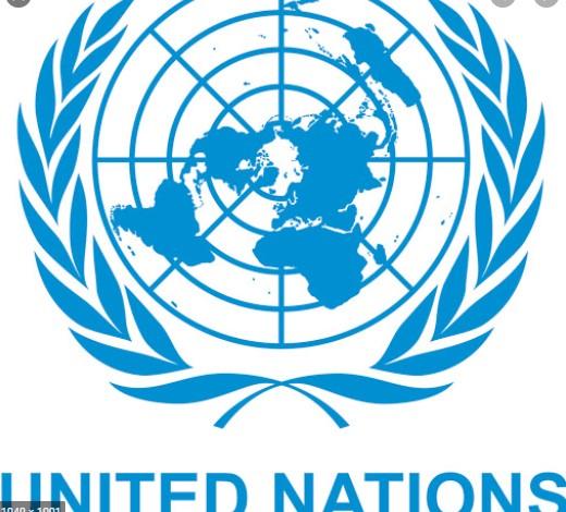 Обединети нации: Немаме издадено никаква проценка на владини мерки поврзани со пандемијата