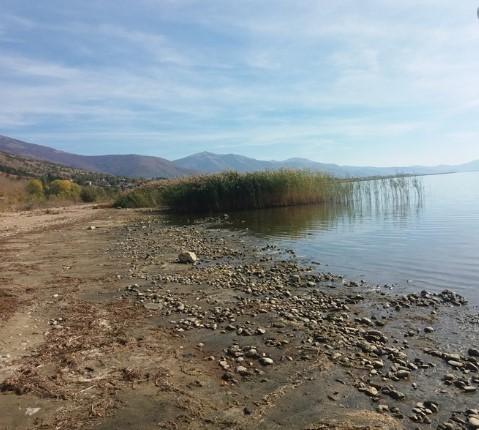 Власта конечно се сети дека треба да се заштити Преспанското езеро кое се празни