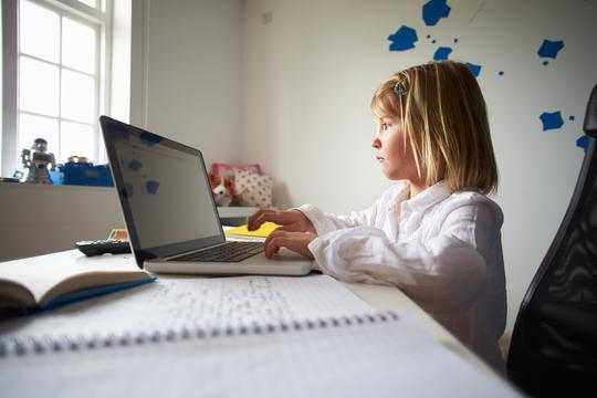 Училиштата почнаа да функционираат онлајн чекаат насоки за оценувањето, а средните и за матурскиот испит