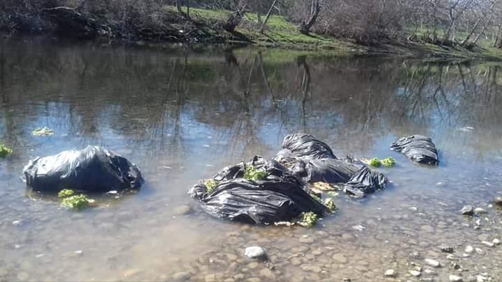 Вреќи со марули пливаат по Црна Река