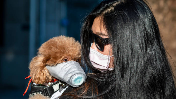 Сопствениците на миленици да се организираат според полицискиот час, исклучоци нема да има
