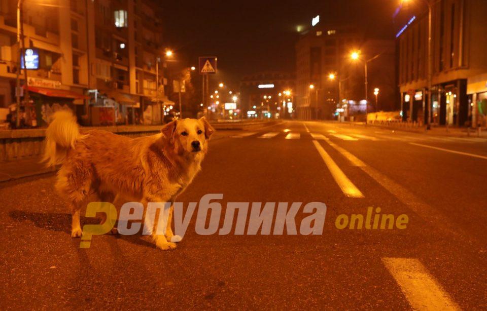 Србија ја повлече одлуката за прошетка на миленичињата од 20 до 21 часот