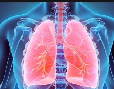Короната за половина час ги уништува белите дробови