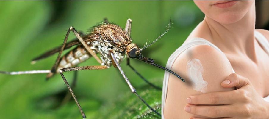 Во Србија e регистрирана западнонилска треска кај комарци