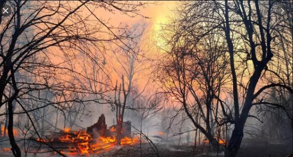 Пожарот кај Едрениково ставен под контрола