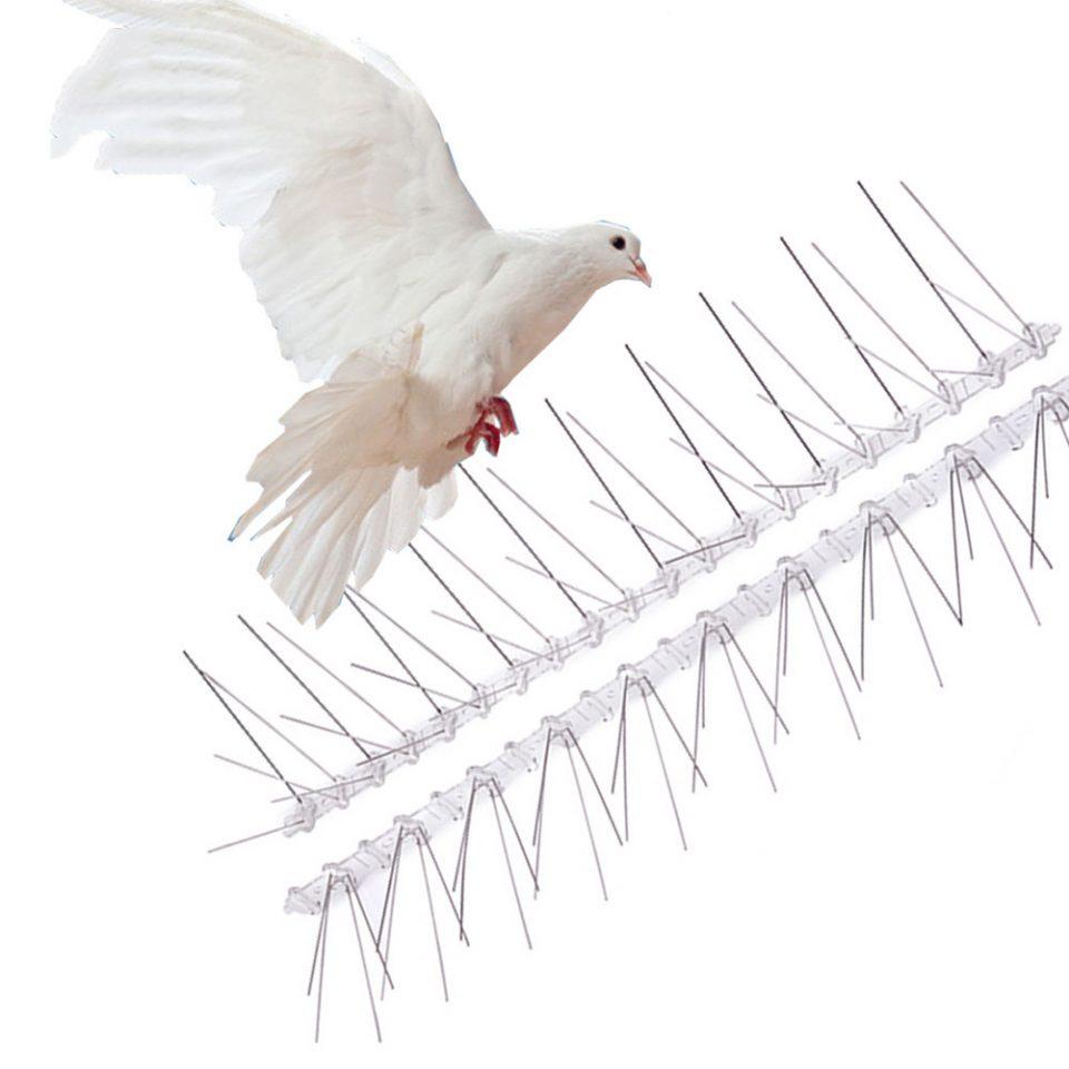 Секоја птица мора да пее со своето грло