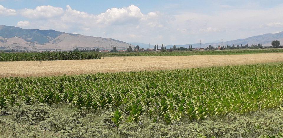 Отворени канцеларии за земјоделците во Новаци и Могила