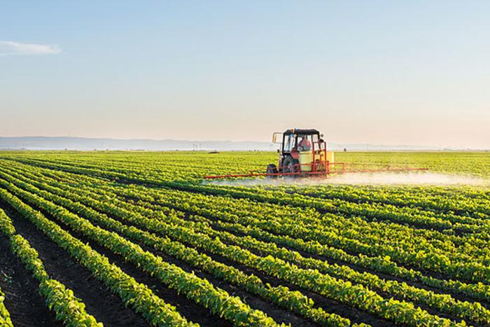 Само олигарсите ќе имаат корист од продажбата на земјоделското земјиште