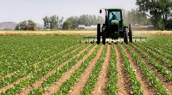 """""""Млад земјоделец"""": Почна пријавувањето за грантови за лица до 40 години да почнат бизнис во земјоделството"""