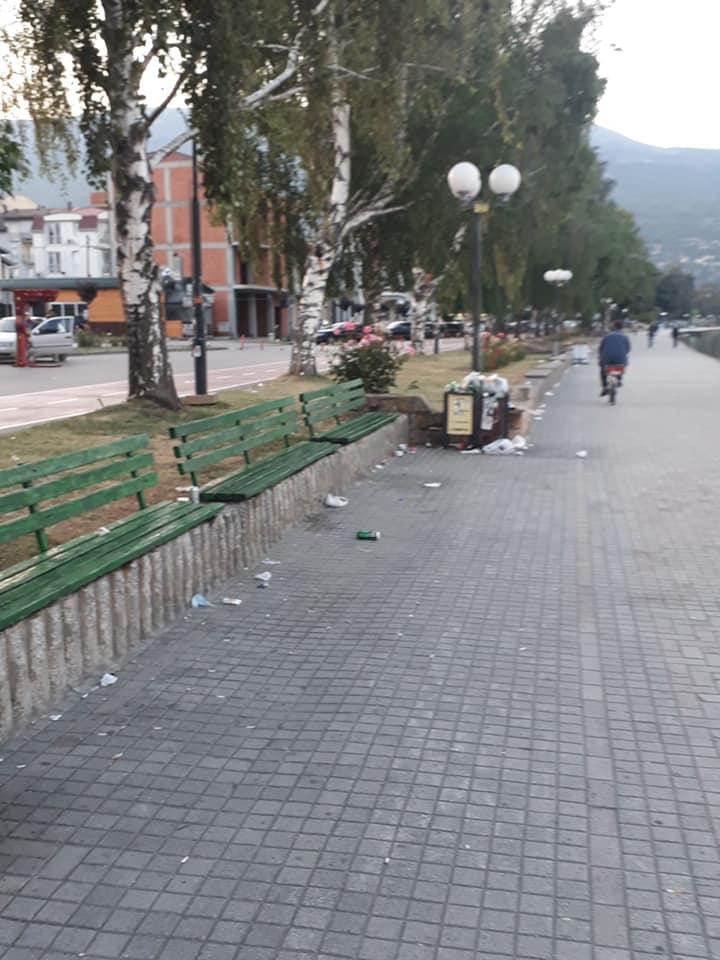 Стефоска призна: Ставањето на Охрид на листата во опасност  не нè амнестира  од одговорност