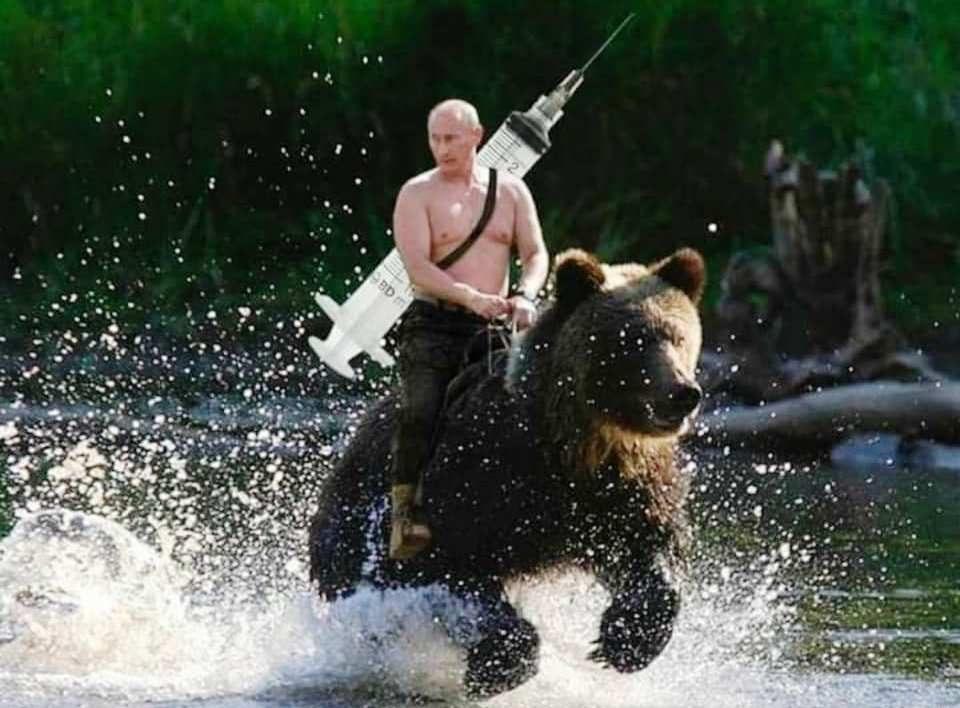 Путин јавнат на мечка ја носи вакцината што ќе го спаси светот