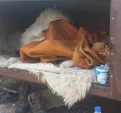 Бездомник живее во тезга на пазарот во Битола,  има и црви но и болести