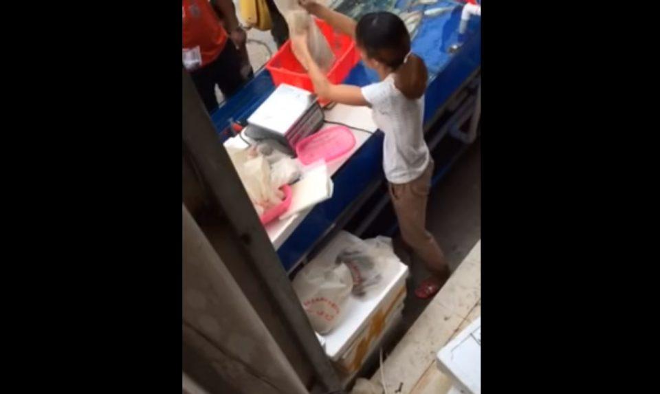 Бесрамна измамничка: Продавачка ги гледа муштериите во очи и им ја менува рибата што ја купуваат