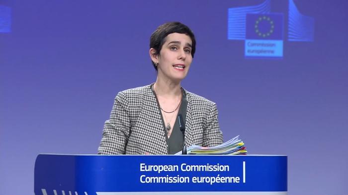Осуда од Европската комисија за полициската бруталност против Ромите
