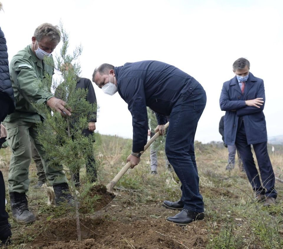 Спасовски засади дрвце во околината на Велес