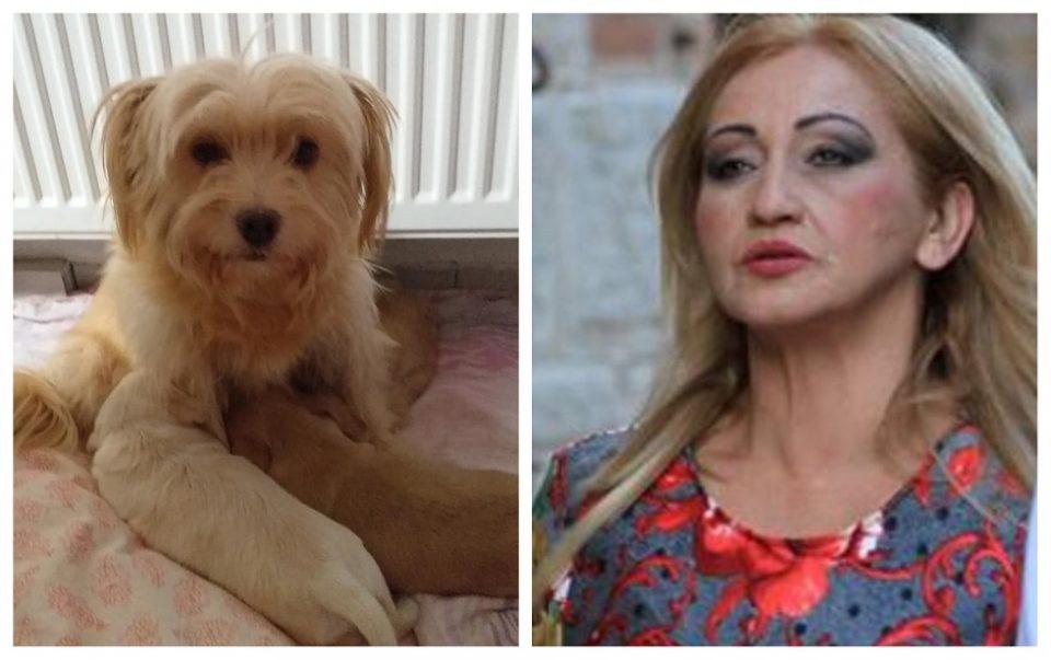 Убиено кучето на Благица Павловска