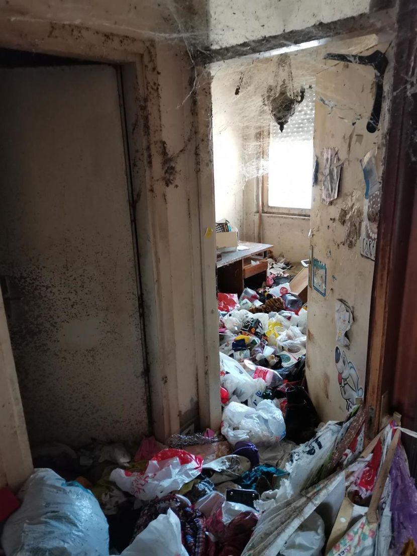 Комшии од пеколот во Белград: На тераса ги закопувала мртвите мачки, од станот изнесени 1.300 вреќи ѓубре
