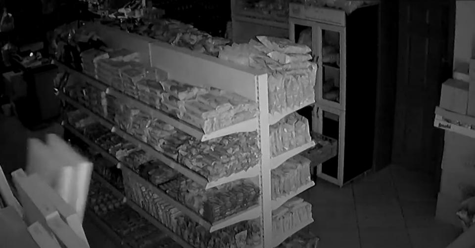 Рафтови се тресат, производи паѓаат на земја: Како изгледаше земјотресот во маркет во Челопек