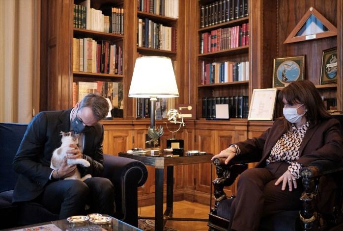 Maчето Калипсо и прави друштво на грчката претседателка