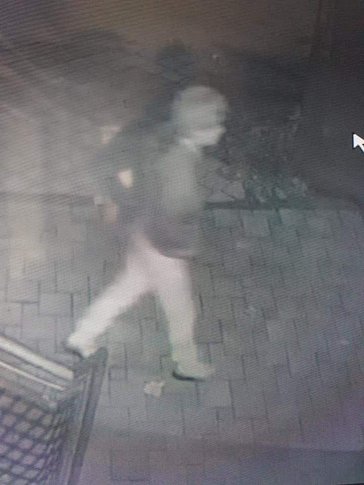 На камера го фатиле како краде