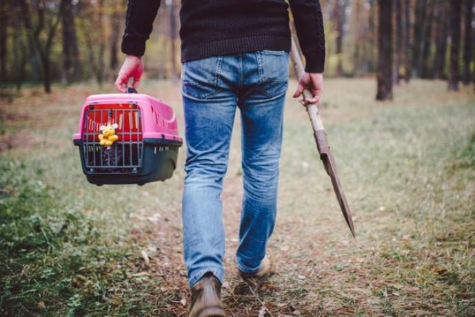 Граѓаните се приморани да ги погребуваат починатите миленичиња на забранети локации