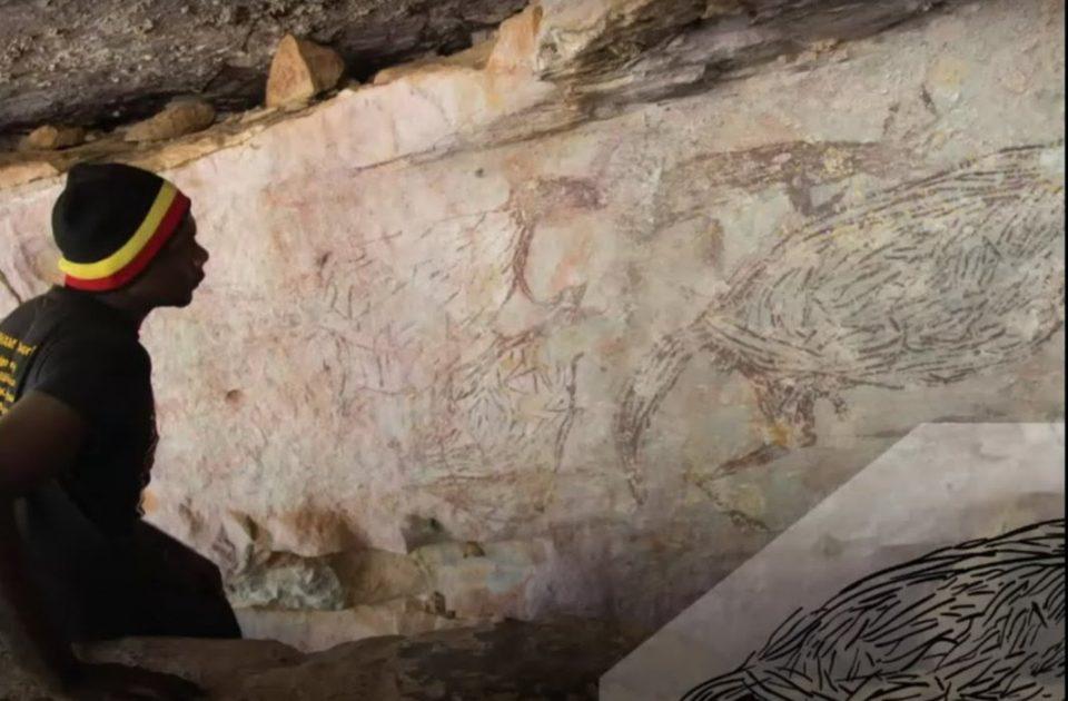Во Австралија откриена фреска од кенгур стара 17.300 години