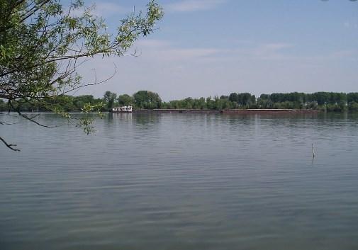 Напорно му било да ги касапи: Веља жртвите ги врзувал за цигла и ги фрлал во Дунав