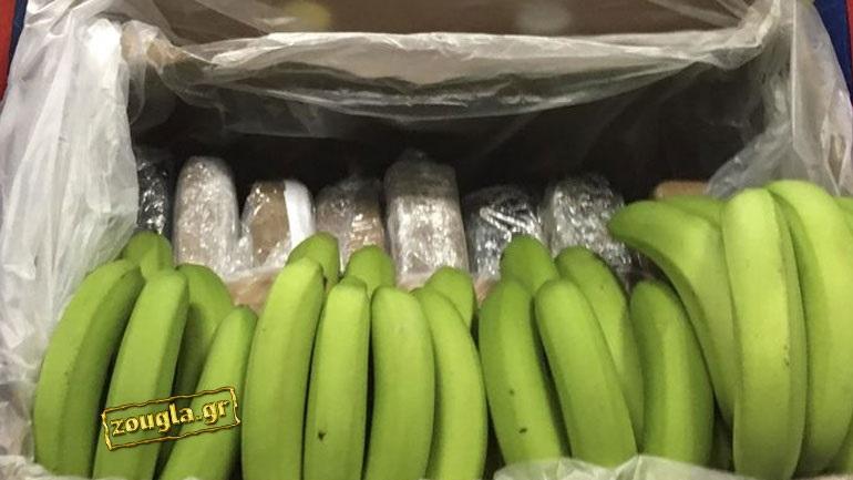 Во контејнер со банани пронајдени 100 килограми кокаин во Атина