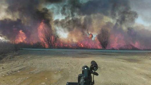 3.000 квадратни метри трска изгореа кај Калишта, не е првпат некој да си чисти терен за плажа